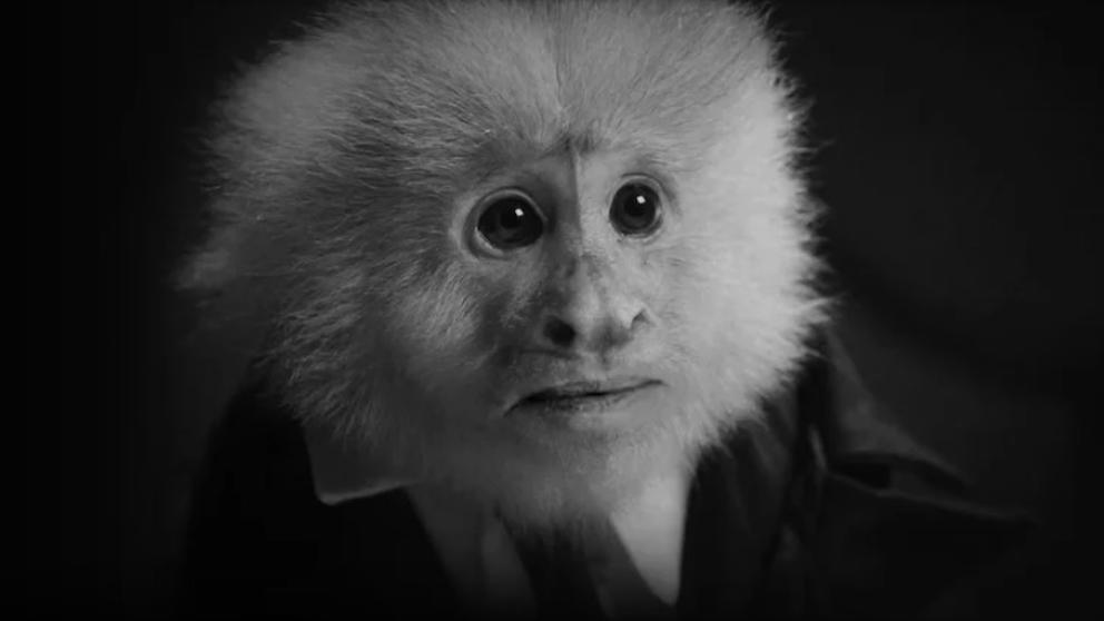 David Lynch cumple años y presenta un cortometraje en Netflix