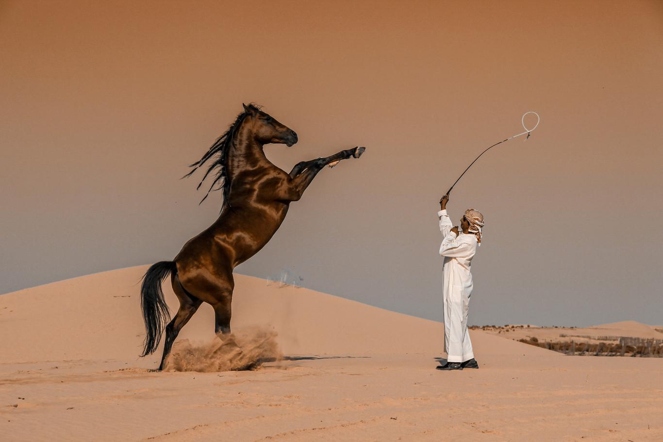Arabia Saudí | Abbas Alkhamis